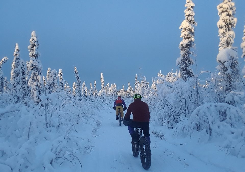 CanoeAlaska Fat Bike Rentals Returning Soon in Pioneer Park